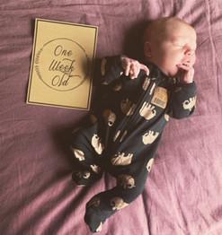 1 Week Old newborn.JPG