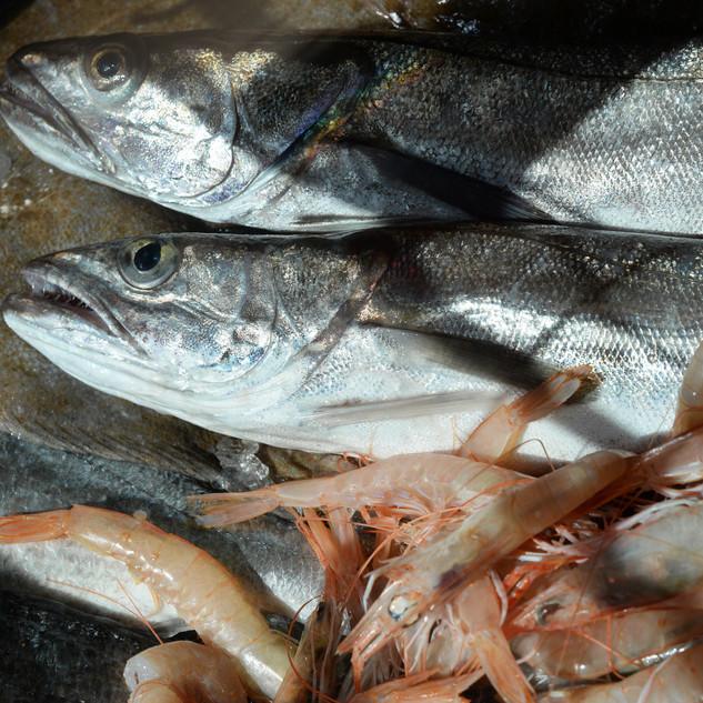 Quando hai voglia di mare, vieni nella migliore ristopescheria di Roma dove potrai acquistare pesce fresco locale, vongole, cozze, gamberi, ostriche e molto altro ancora.