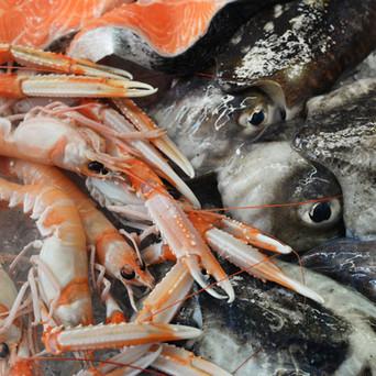 Il litorale laziale è ricco di pesci, molluschi e straordinarie creature marine. Il Lazio è perciò una delle regioni dove la cucina di pesce è un must. Se vuoi gustare piatti tipici della tradizione locale a base di pesce ti aspettiamo al nostro banco pescheria o ai tavoli della tua Ristopescheria di fiducia.