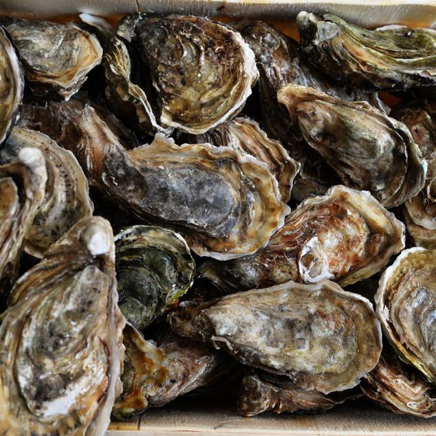 Alla francese con scalogno marinato in aceto bianco, con limone o pure così come le offre il maree, le ostriche sono felicità allo stato puro.