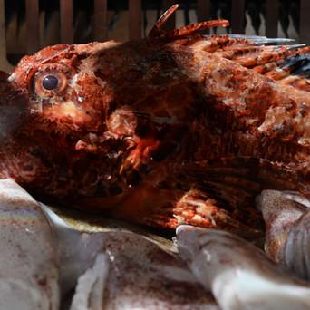La materia prima è il focus principale del locale: pesce locale dal litorale laziale con le eccellenze e una vasta disponibilità con orate, spigole, rombo, razza, palamite, gamberi rosa e rossi, ampia selezione di molluschi tra cozze, vongole, telline e ostriche interessanti.