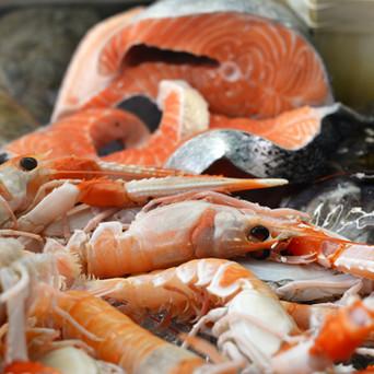 Il salmone è un pesce dal nome sontuoso come quello di un re e le sue carni sono tra le più ricche e pregiate.