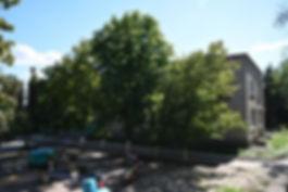 cheburashka_edited.jpg