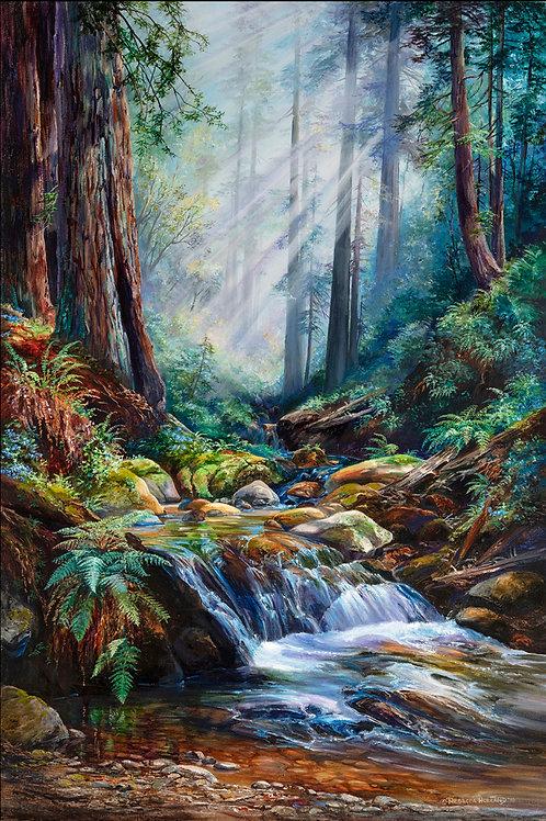 Tunitas Creek