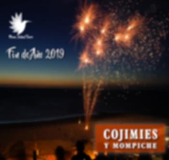 Fin_de_año_2019_Cojimies.png
