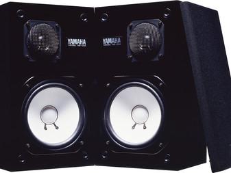 Les NS10 ou le comportement moutonnier du petit monde de l'audio-pro... (histoire cocasse)