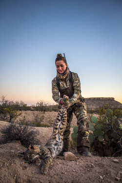 Trans Pecos GuideService Bobcat Hunt