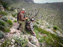 Desert Bighorn, Trans Pecos Guide