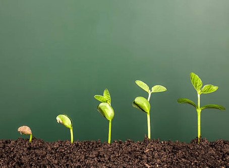 Growth takes Grit