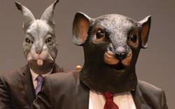lapin+rat