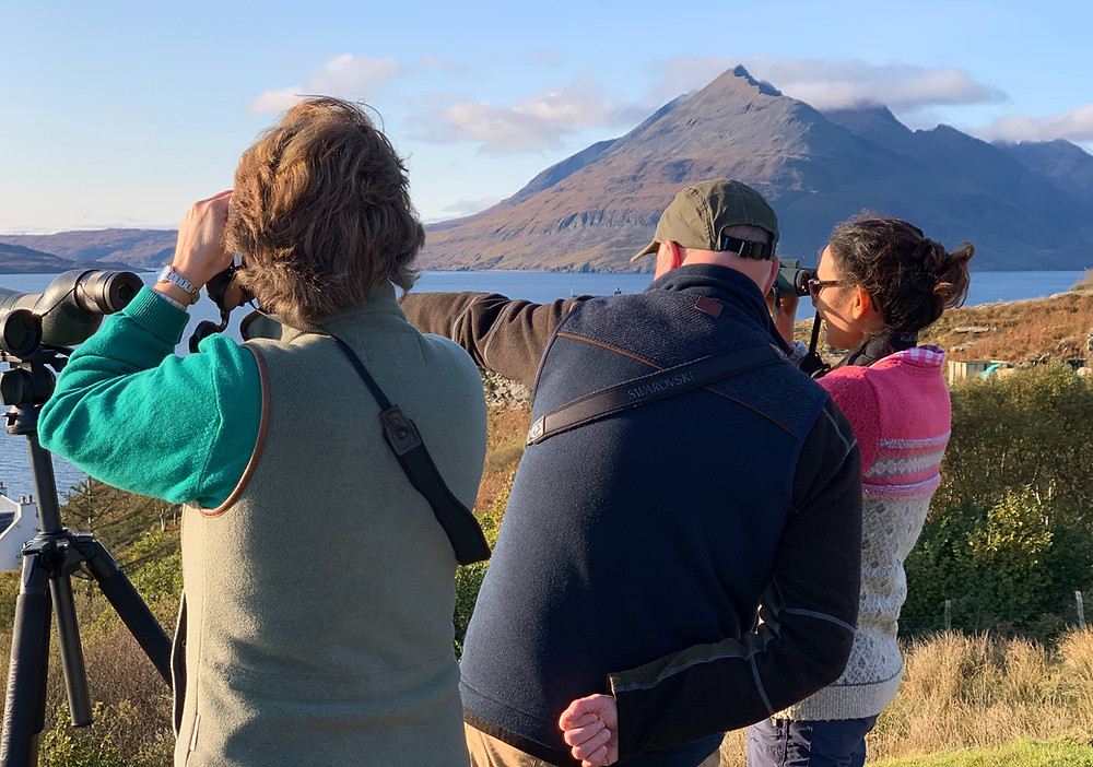 David Lambie, the wildlife guide for SKYEFARI wildlife tours on the Isle of Skye, points out some minke whales he has spotted in the sea near to Elgol.