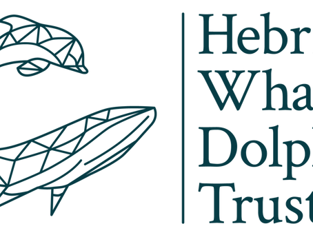 New Charity Partnership with the Hebridean Whale and Dolphin Trust