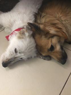 LENI & ENYA