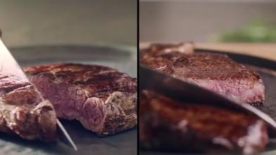 philips steakmaker