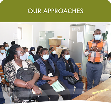 Intrahealth_website_what we do_our appra