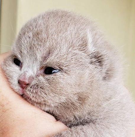 This baby is so cute!_😻😻😻😻😻😻😻_edi
