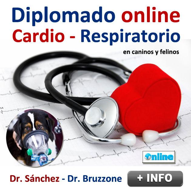 Diplomado ONLINE Cardio-Respiratorio