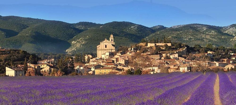 Nel 1300 i papi lasciarono Roma e si trasferirono ad Avignone, da qui prende il nome la cittadina di Chateauneuf-du-pape