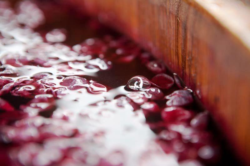 """Il metodo Ripasso, è una pratica antica che consisteva nel """"ri-passare"""", quindi mettere in contatto, il vino Valpolicella con le vinacce dell'Amarone"""