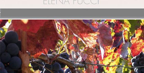 Degustazione Elena Fucci e il suo Titolo + ingresso a Vinòforum SDG