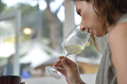 wine master vinòforum academy