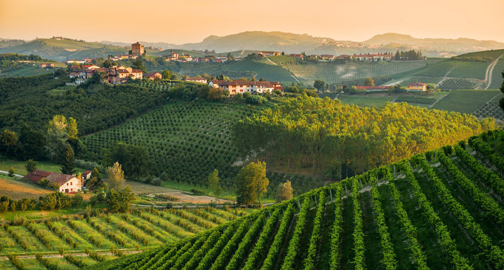 la rivincita del Monferrato