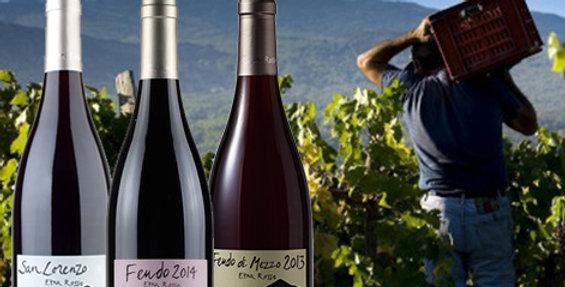 Degustazione I vini dell'Etna + ingresso a Vinòforum SDG