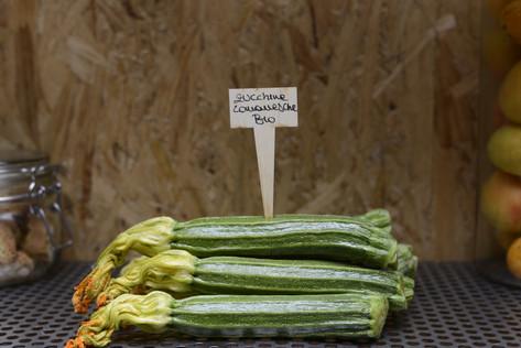 Zucchine romanesche Bio
