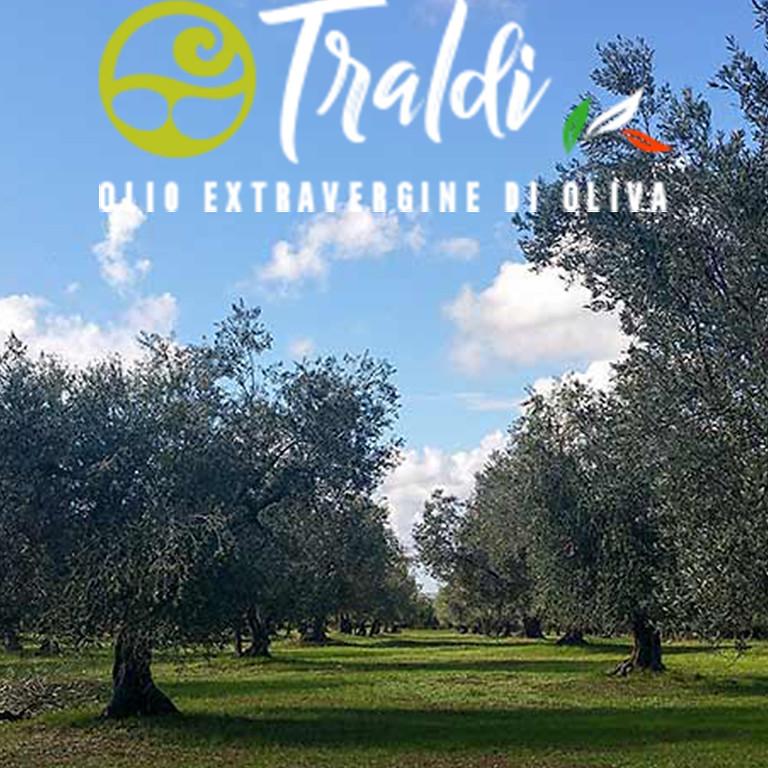 La Tuscia: terra etrusca custode di una storia olivicola millenaria