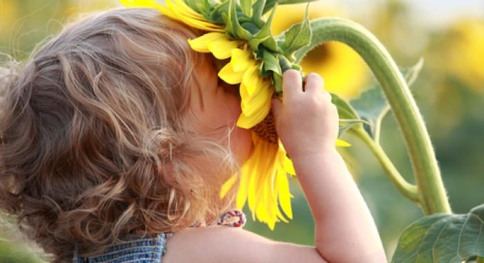 come allenare la memoria olfattiva