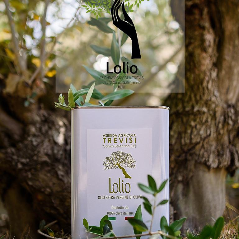 L'olivicoltura salentina, tra le necessità di conservazione e rinnovamento produttivo