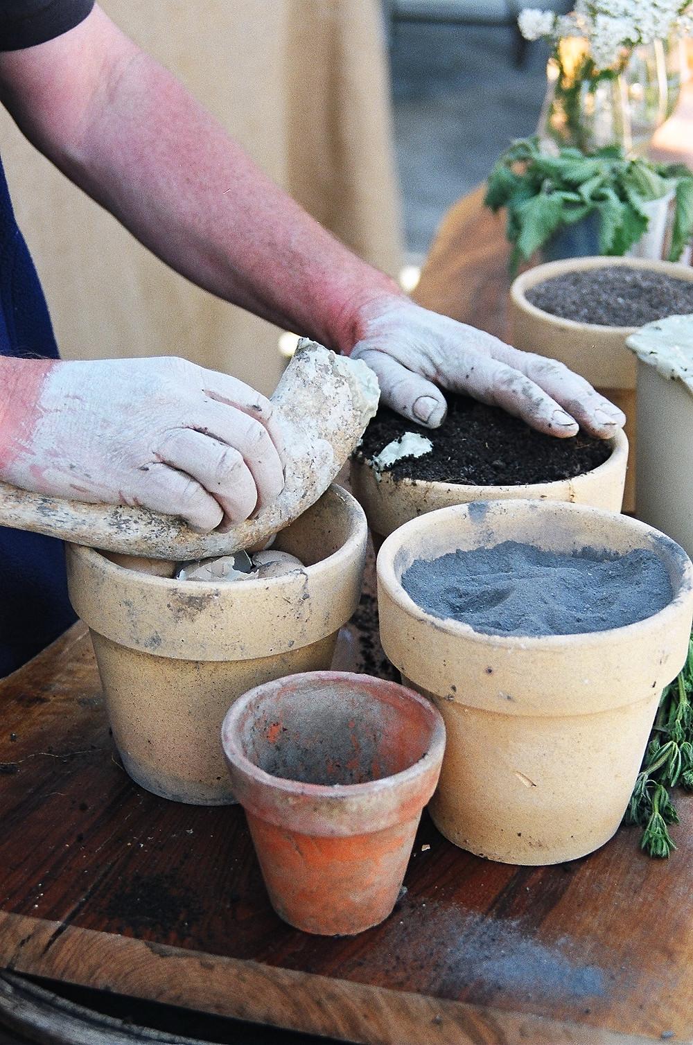"""biodinamica: solo specifici """"preparati"""" usati sui terreni e sulle piante per stimolare il suolo e curare la salute delle piante e la loro qualità."""
