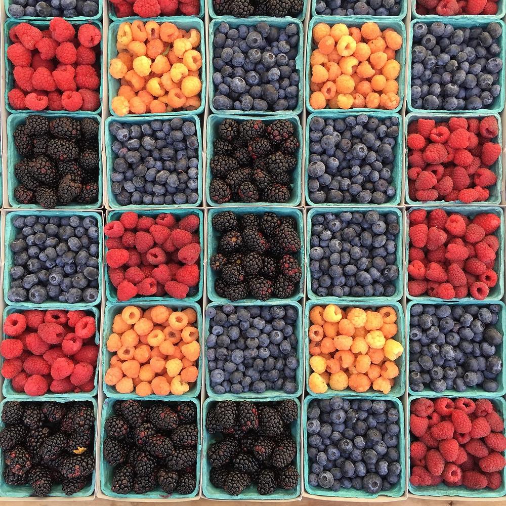 sentore di piccoli frutti di bosco nel vino