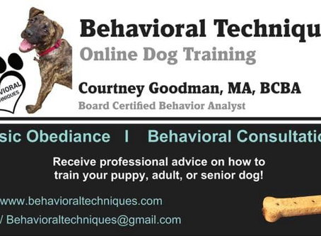 Now Offering Online Dog Training!