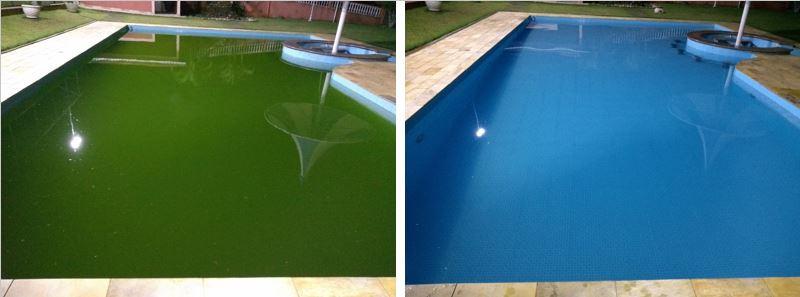 Piscina Algas Verde.JPG