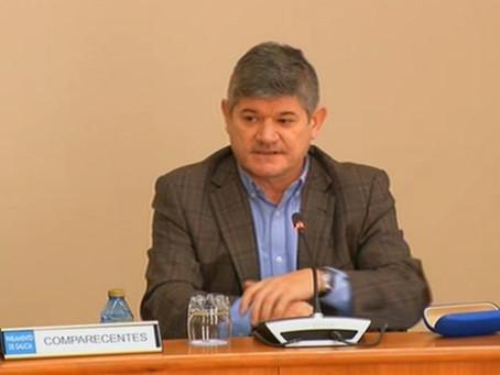 Parlamento: La Xunta sigue apostando por la lucha biológica contra la avispilla del castaño