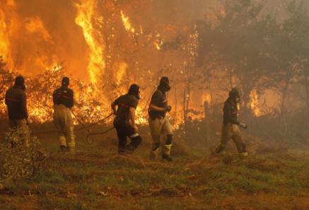UVigo y Xunta impulsan una nueva ley contra los incendios forestales