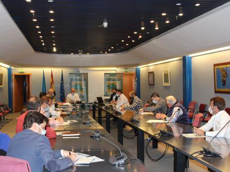 Inician la preparación de la feria forestalinternacional Asturforesta para 2021