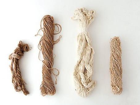 Galicia aspira a producir el 3% mundial de textil procedente de fibra optando para ello a fondos UE.