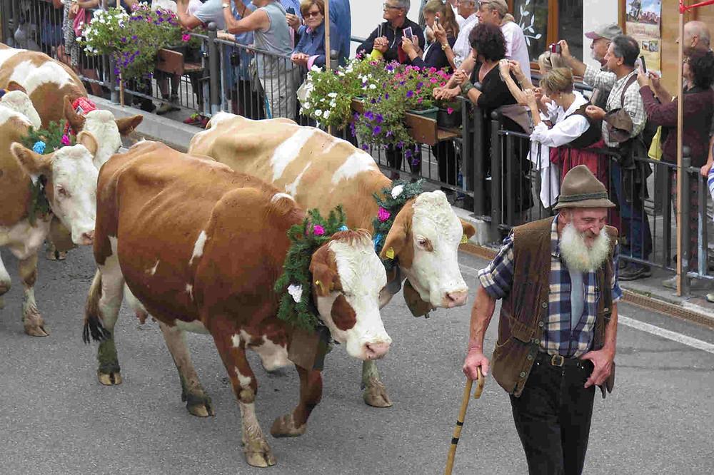 desmondagada cadore agordino settembre dolomiti festa tradizione cultura