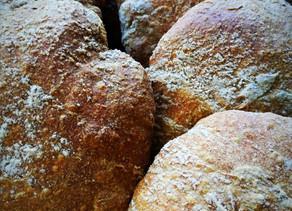 La Puccia. Autentico pane delle Dolomiti.