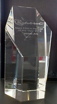 Gemalto-Safenet-Award_rt200.jpg