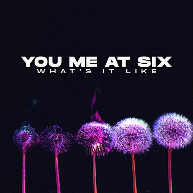 You Me At Six - What's It Like