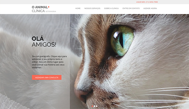 Animais website templates – Clínica de animais