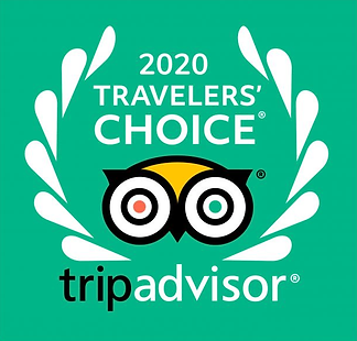 Travelers Choice2 2020.png