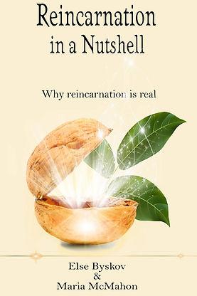 Flat cover Reincarnation Nutshell.jpg