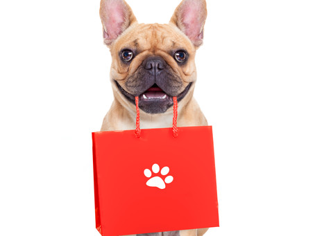 3 questions to ask yourself before buying a gift for a pet owner