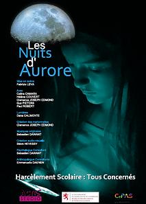 Affiche nuits d'aurore - image.PNG