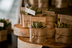 Escort Card Display & Party Favors