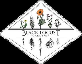 Black Locust Color.png